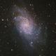 Messier 33 Triangulm Galaxy,                                GJL
