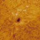 Sunspot AR2767,                                ken_and_sara