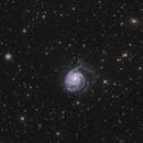 M101,                                noodle
