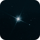 Canopus Star,                                BRUNO_BRANDAO
