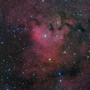 Ced214 (L+Ha)RGB,                                Ken-ichiro Tanaka