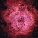 NGC 2244 - Rosette Nebula,                                Bill Blanshan