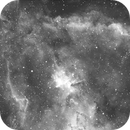 Mel 15 + NGC 1805,                                Giancarlo Zeni