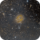 IC5146 RGB,                                Dave Bloomsness