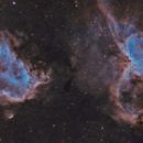 IC1805 & IC1848 SHO,                                Daniel_Trueba