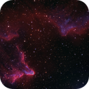 IC 59, IC 63 (Sh2-185) Ghost of Cassiopeia,                                Maciej