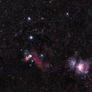 Orion @ 200mmFL, Canon EOS Ra, Borg 55FL,                                Tim McCollum