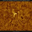 AR2770 Sunspot with Light Bridge in HA, 08-09-2020,                                Martin (Marty) Wise