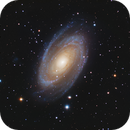 40 Hours on M81,                                Hunter Harling