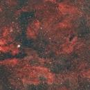 IC1318 - Gamma Cygni Nebula,                                Tim Hutchison