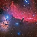 Horsehead and Flame Nebulae,                                Terry Hancock