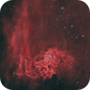 Flaming Star Nebula and Tadpole Nebula,                                JMDean