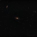 Bodes Galaxy & The Cigar Galaxy,                                Don Curry