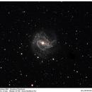 M83 Galaxy,                                Marcelo Domingues