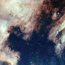 Pelican Nebula,                                Andre van Zegveld