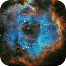Rosette Nebula,                                dshippen