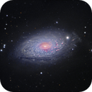 M63 - The Sunflower galaxy,                                Sara Wager