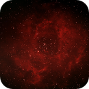 NGC2244 / Rosette,                                jdhartgerink