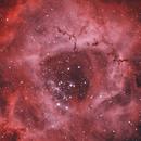 Mon Impression - The Rosette Nebula [NGC 2244] in HOO,                                G400