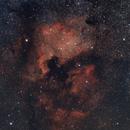 NGC 7000: North America Nebula,                                falke2000