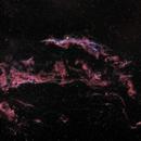 The veil nebula,                                Massimo Miniello