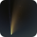 The Great Comet of 2020,                                Anthony Quintile
