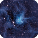 IC-417 Spider Nebula,                                Seymore Stars