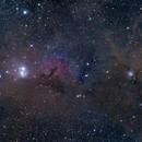 "IC348&NGC1333 wide field mozaic,                                Makoto""G-H""Shindou"