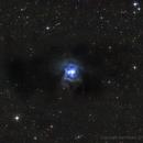 NGC7023,                                Dario Iraci