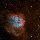 IC410 - The Tadpoles Nebula in Bicolor HaOIIIOIII,                                Focus AG