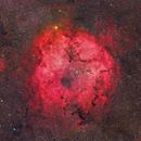 IC1396,                                Jose Mtanous