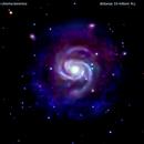 m100 galassia in chioma berenice                                        distanza 55 milioni A.L.,                                Carlo Colombo