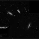 NGC 7582, NGC 7590, NGC 7599,                                Roger Groom