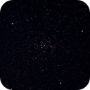 M44,                                Björn Hoffmann