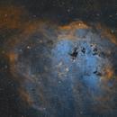 IC410 Tadpoles Nebula A public data pool created by IrvingPieters,                                whitenerj