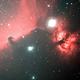 Horsehead and Flame Nebulae,                                Chris W