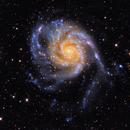 M101,                                PJ Mahany