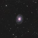 NGC3486,                                Albert van Duin
