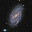 M109 Barred Spiral Galaxy,                                Jerry Macon
