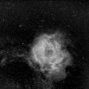 Rosette Nebula, Ha, wide field,                                Stephen Garretson