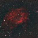 Sh2-261 – Nebulosa di Lower,                                Alessandro Curci