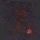"NGC 2264 und NGC 2237 - Mosaik (135 mm) ""2. try"",                                Wolfgang Zimmermann"