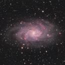M33 - Triangulum Galaxy,                                Sven Arnold