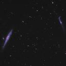 NGC 4631 - NGC 4656 / Whale Galaxy and Hockey Stick Galaxy,                                Falk Schiel