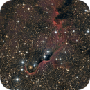 IC 1396 - The Elephant Trunk Nebula,                                Chris Fellows