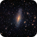 NGC 7331 and Deer Lick Group,                                rveregin