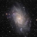 M33 in Triangulum LRGB 2 pannel mosaic,                                Alex Iezkhoff