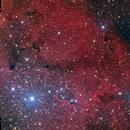 IC1396,                                David Cheng