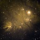 Cone and Fox Fur Nebula (NGC 2264),                                Bruce Rohrlach