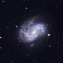 NGC 4051 Seyfert Galaxy in UMa,                                Ian Gorin